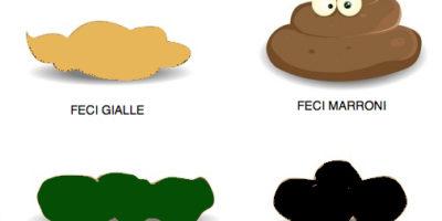 feci gialle nere verdi e marroni