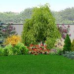 piante-da-giardino_800x333