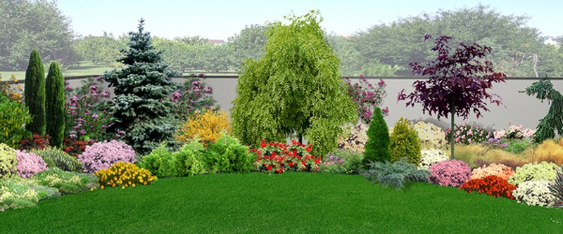 Valorizzare il giardino con le piante ecco perch la scelta giusta la risposta di - Piante invernali da giardino ...